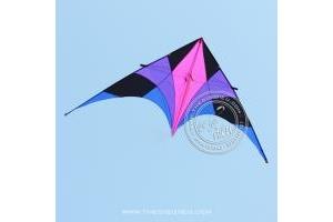 DIỀU DELTA THUNDER BIRD 2.8M (tạm hết)